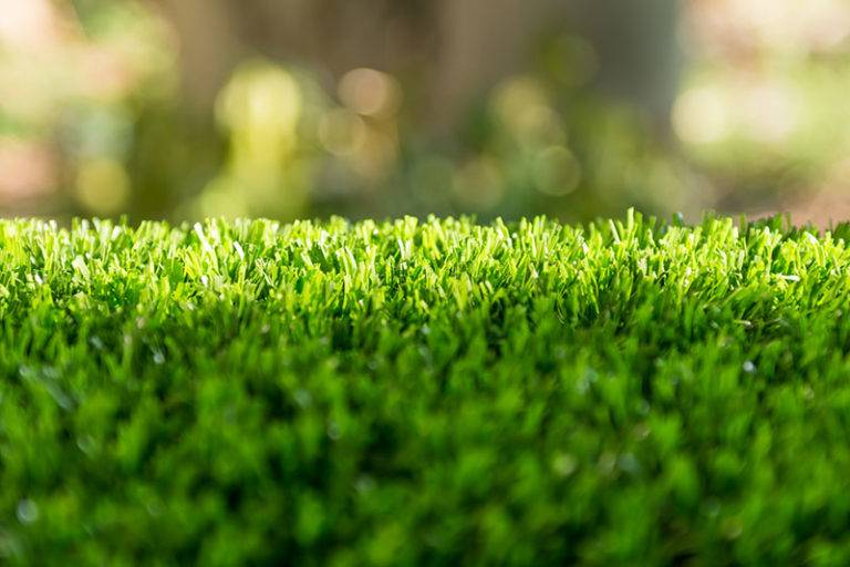 artificial grass outside
